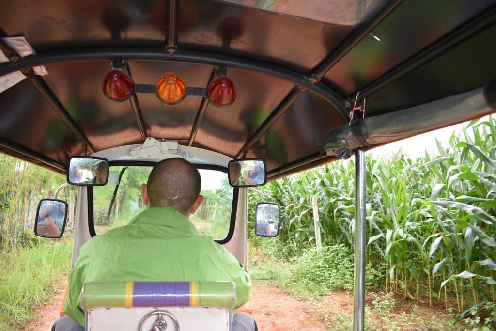 A traveller driving a Tuk Tuk through fields of grass
