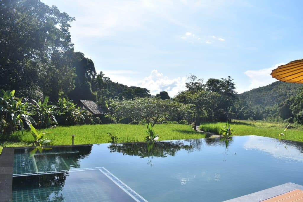 View across a swimming pool and rice fields