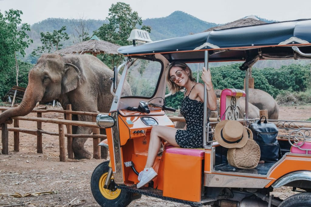 Young woman sitting in a Tuk Tuk in front of elephants