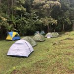 Tents set up on the edge of the forest in Thailand